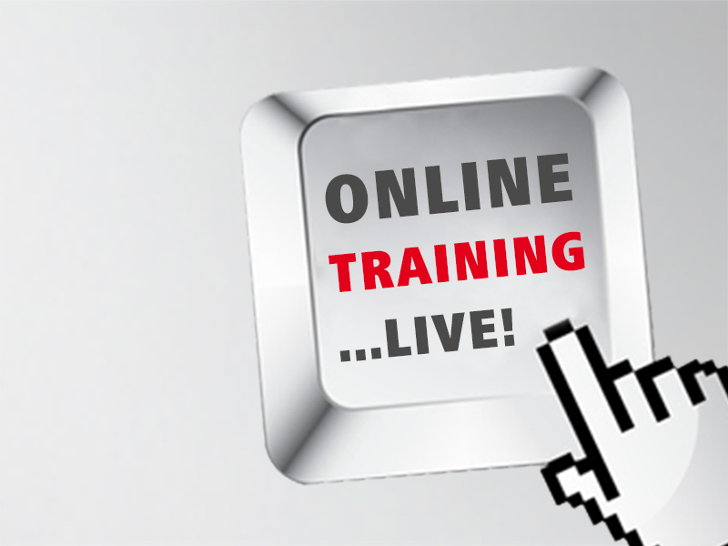 on line training Our web-based courses are the most convenient way for you to learn basic firearms safety, shooting techniques, personal defense strategies.